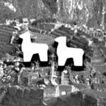 2 von 3 Lamas