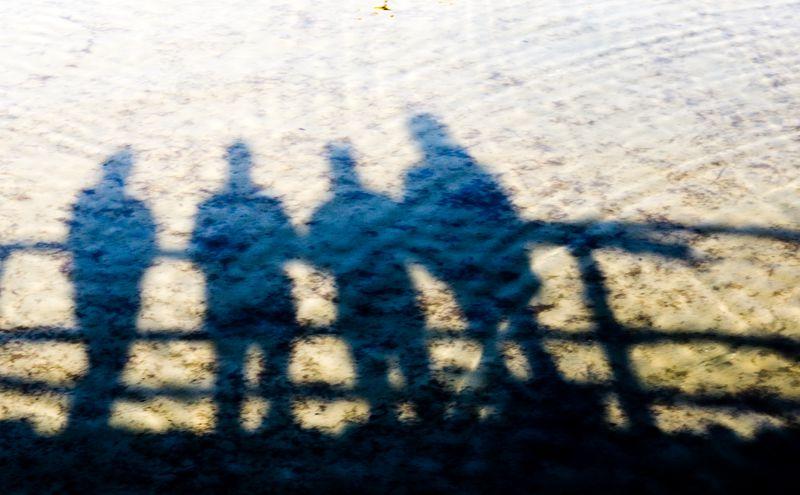 Bild von Bodenseedelfinsucher