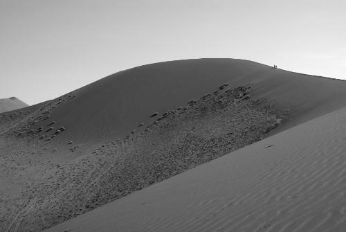 Bild der höchsten Düne von Namibia