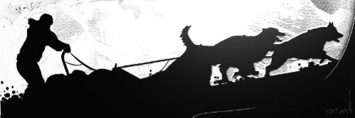 Bild von Snow Tails